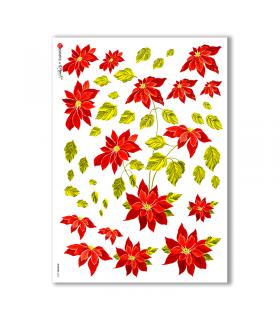 FLOWERS-0260. Papel de Arroz flores para decoupage.