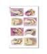 CULT-0118. Papel de Arroz sacras para decoupage.