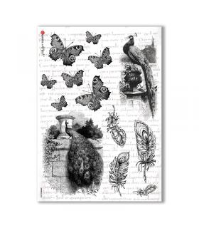 ANIMALS-0033. Papel de Arroz animales para decoupage.