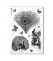 ANIMALS-0035. Carta di riso animali per decoupage.