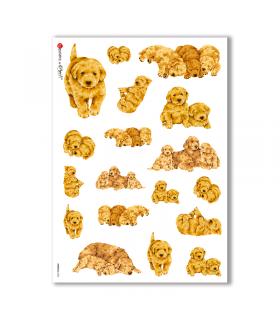 ANIMALS-0042. Carta di riso animali per decoupage.