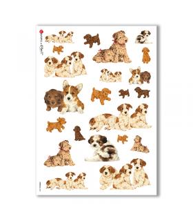 ANIMALS-0044. Papel de Arroz animales para decoupage.