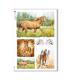 ANIMALS-0071. Carta di riso animali per decoupage.