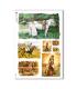 ANIMALS-0073. Carta di riso animali per decoupage.