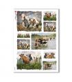 ANIMALS-0078. Carta di riso animali per decoupage.