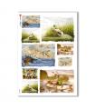 ANIMALS-0079. Carta di riso animali per decoupage.