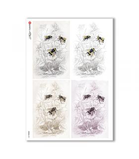 ANIMALS-0094. Carta di riso animali per decoupage.