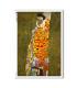 ARTWORK-0059. Papel de Arroz obras de arte para decoupage.