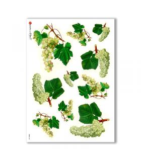 FOOD-0003. Carta di riso cucina per decoupage.