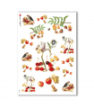 FOOD-0028. Carta di riso cucina per decoupage.