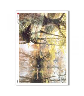 VIEWS-0049. Landscape Rice paper  for the decoupage.