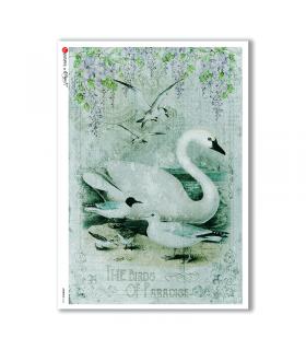 ANIMALS-0126. Carta di riso animali per decoupage.