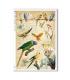 ANIMALS-0131. Carta di riso animali per decoupage.