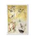 ANIMALS-0134. Carta di riso animali per decoupage.