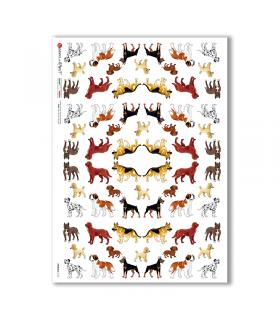 ANIMALS-0135. Carta di riso animali per decoupage.