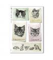 ANIMALS-0136. Carta di riso animali per decoupage.