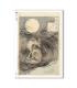 ARTWORK-0095. Carta di riso opere d'arte per decoupage.