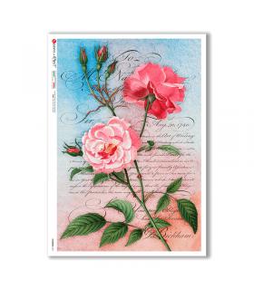 FLOWERS-0351. Papel de Arroz flores para decoupage.