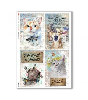 ANIMALS-0159. Animals Rice Paper for decoupage.