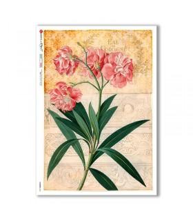 FLOWERS-0355. Carta di riso fiori per decoupage.
