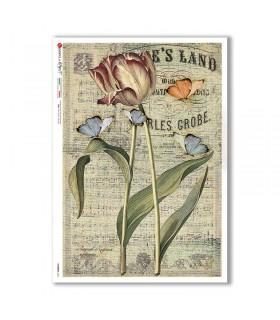 FLOWERS-0357. Papel de Arroz flores para decoupage.