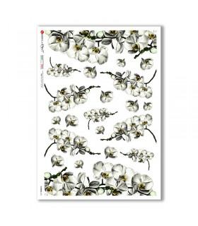 FLOWERS-0367. Papel de Arroz flores para decoupage.