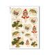 CHRISTMAS_0252. Carta di riso vittoriana Natale per decoupage.
