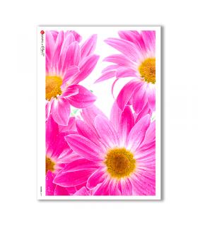 FLOWERS-0019. Papel de Arroz flores para decoupage.