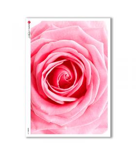 FLOWERS-0021. Papel de Arroz flores para decoupage.