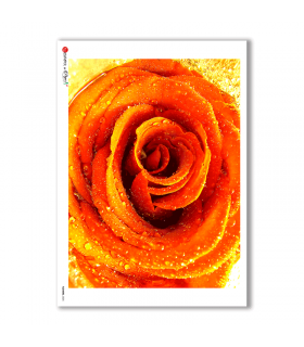 FLOWERS-0025. Carta di riso fiori per decoupage.
