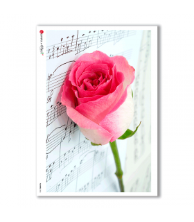 FLOWERS-0026. Carta di riso fiori per decoupage.