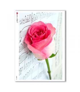 FLOWERS-0026. Papel de Arroz flores para decoupage.