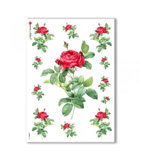 FLOWERS-0041. Papel de Arroz victoriano flores para decoupage.
