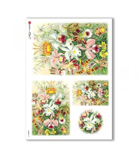 FLOWERS-0043. Papel de Arroz victoriano flores para decoupage.