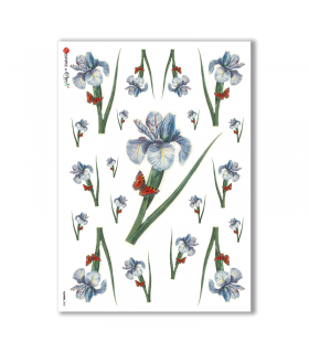 FLOWERS-0052. Carta di riso fiori per decoupage.