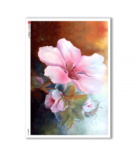 FLOWERS-0080. Carta di riso fiori per decoupage.