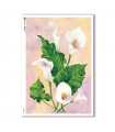 FLOWERS-0093. Carta di riso fiori per decoupage.