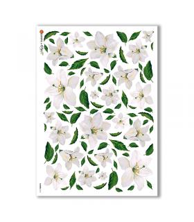 FLOWERS-0112. Papel de Arroz flores para decoupage.
